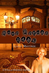 Home Before Dark by Lilly Maytree